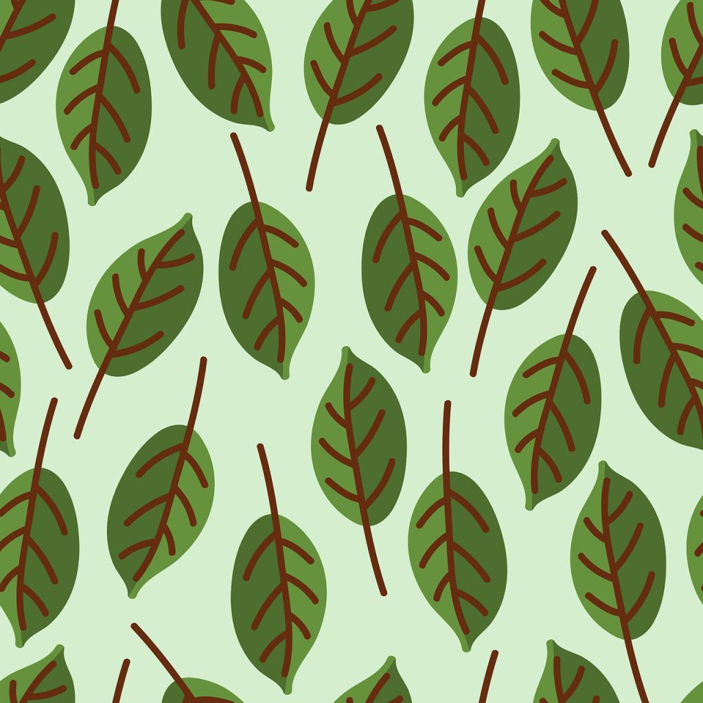 design, pattern, green-3289964.jpg